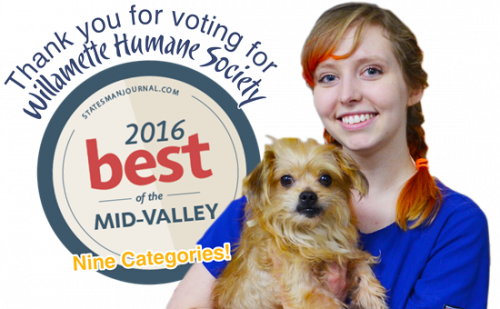 Thank YOU for Making Willamette Humane Society the Best of the Mid-Valley