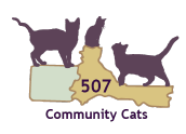 2013-2014 Annual Report Community Cats Graphic
