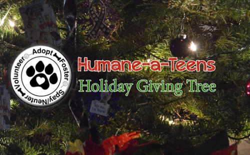 Holiday Giving Tree Banner