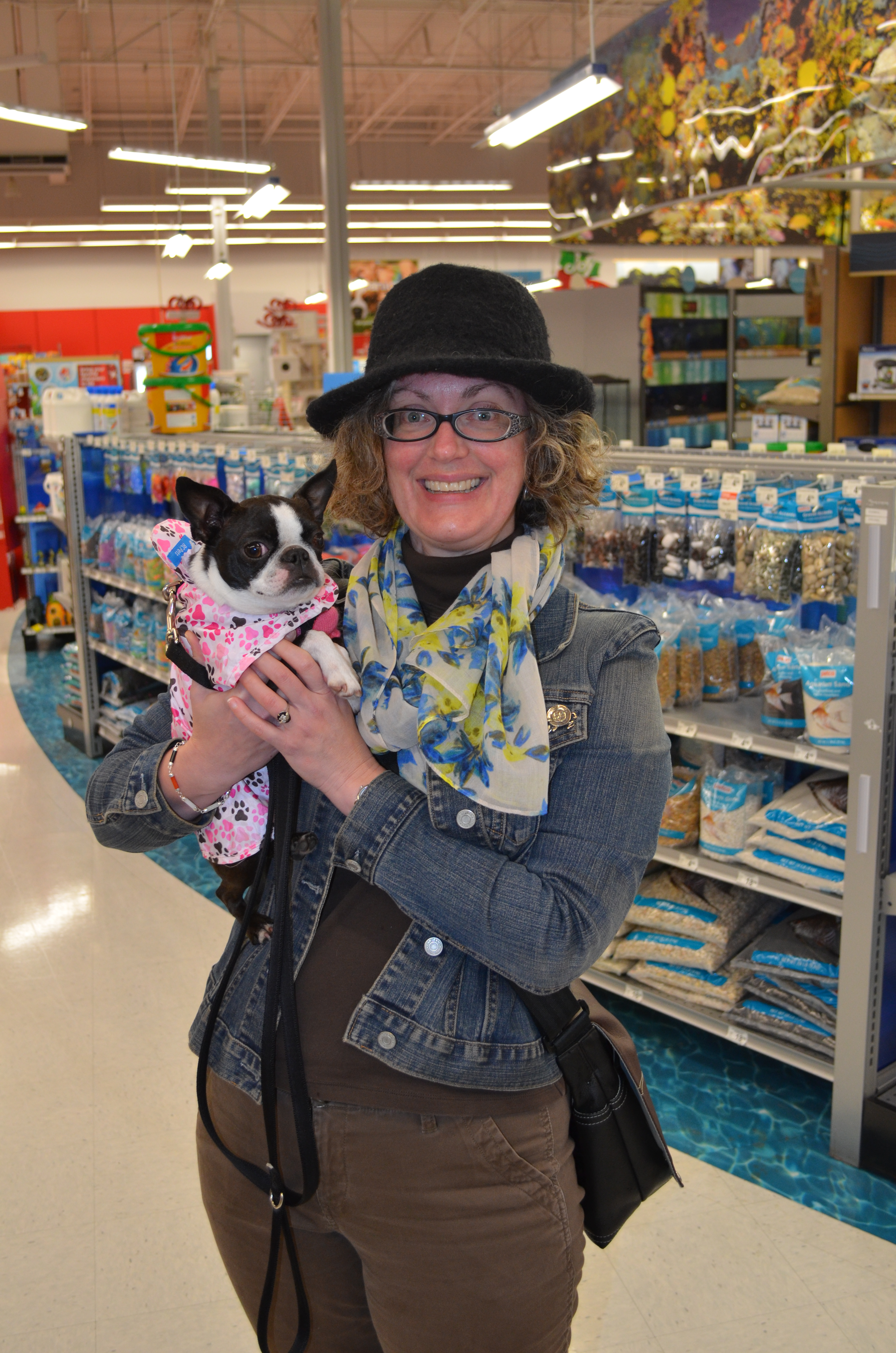 Jean Dion, cat blogger, makes a celebrity appearance!
