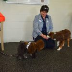Behavior & Training Open House Was a Hit!
