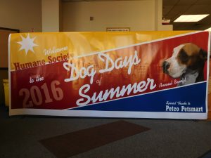 What do you get when you mix inmates with shelter animals and their caring handlers on a warm summer evening? The OSCI Annual Dog Days of Summer event.