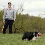 Back to School Basics: Dog Exercise