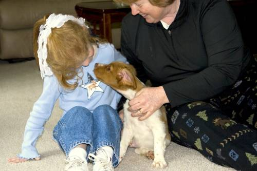 Whether you're a seasoned owner or just welcomed a pup into your home, knowing the tactics and resources for preventing dog bites is essential.
