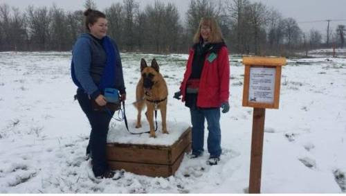 With the help of dedicated volunteers, Willamette Humane Society introduces its latest dog enrichment project: The Thinking Trail.