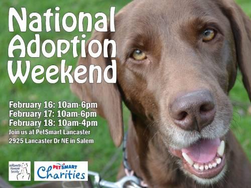 Petsmart Charities National Adoption Weekend Willamette Humane Society