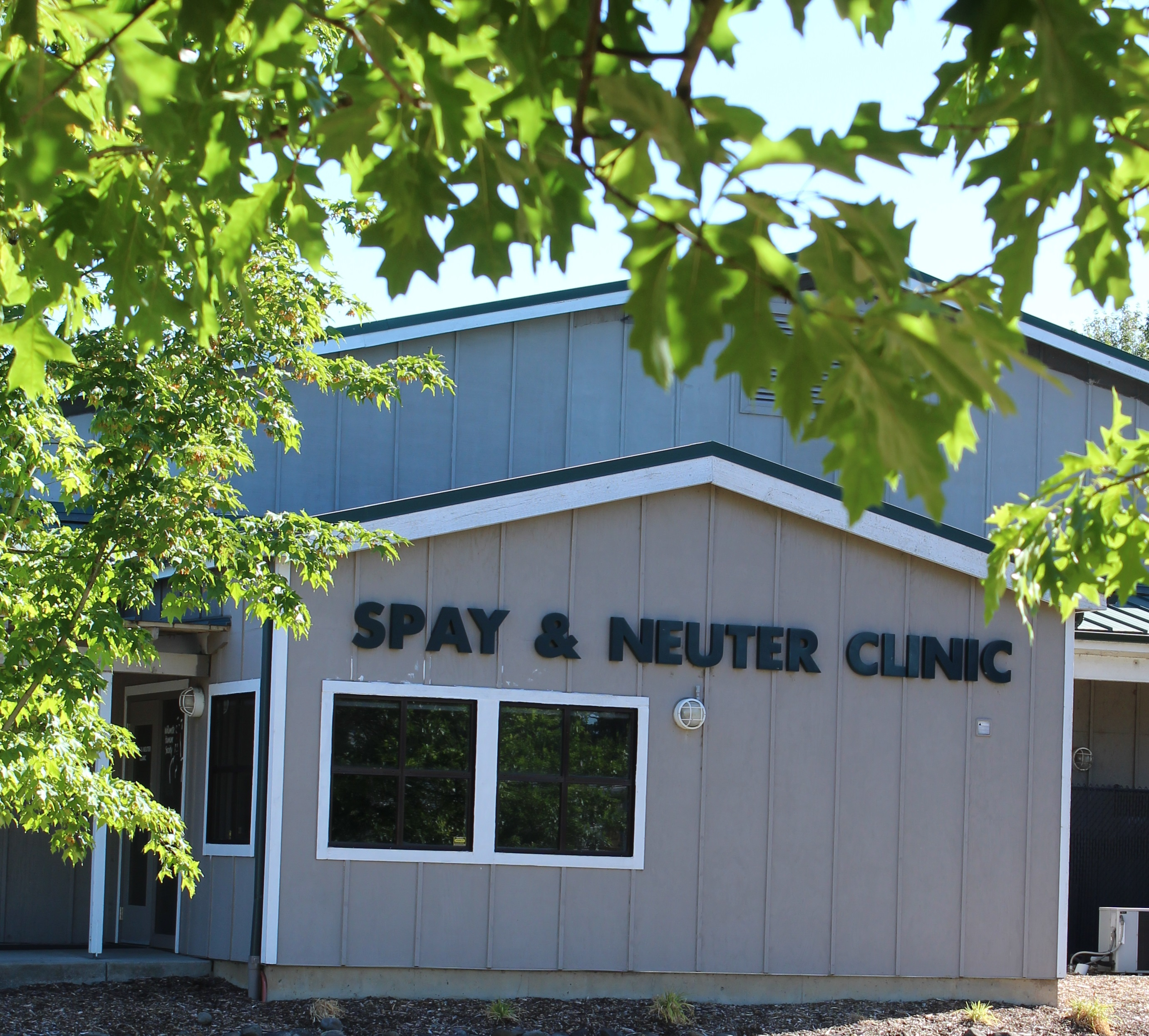 WHS Spay and Neuter Clinic