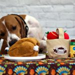 How to Avoid Thanksgiving Pet Faux Pas
