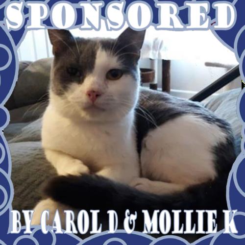 Sample Pet Sponsor image