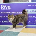 Newly Named Petco Love Invests in WHS